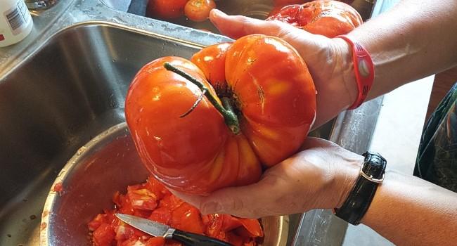 castings_tomato